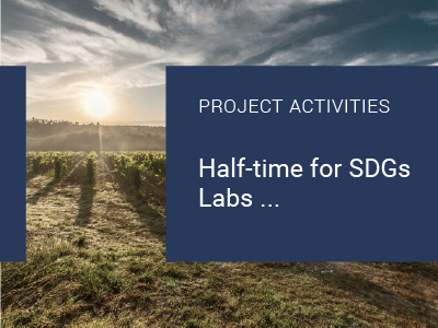 Read more about the article Half-time for SDGs Labs…